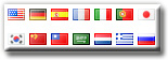 Translator Plugin Pro Flags