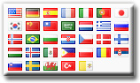 Translator Plugin Gold Flags